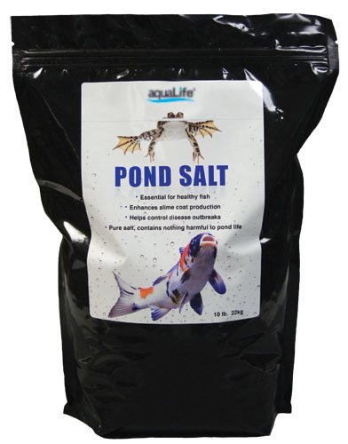 Potassium Permanganate-Superb disinfectant and parasiticide, from Koi Health and Disease (part 2)